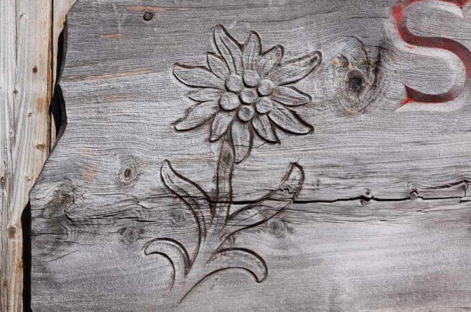 Könnyen elsajátítható a fa gravírozás